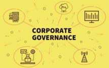 Digital Risk Management et Corporate governance